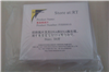 FISH0010防脱载玻片(氨基处理) 北京 索莱宝 实验室 耗材