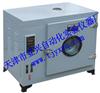 供应电热鼓风干燥箱 型号101-A电热恒温鼓风干燥箱