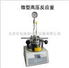SLM50海南供应微型高压反应釜