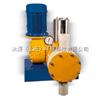 SWE Exacta 系列液压隔膜计量泵