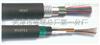 HYA23音频电缆